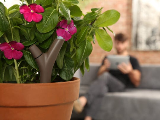 The Parrot Flower Power Wireless Plant Sensor is a smart gardening gadget capable of recommending which plants will thrive in specific locations by matching algorithms to a database of more than 6,000 plants and flowers.