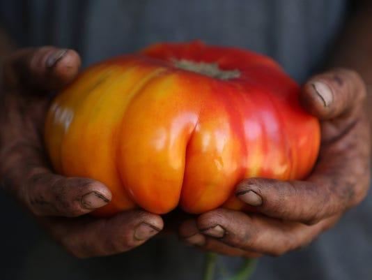 Little San Juan County takes on GMO goliaths