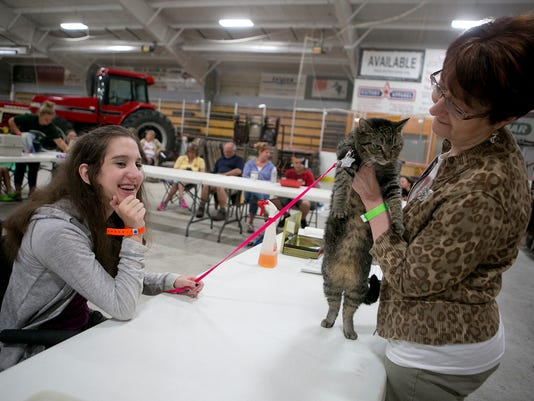 MNH Fair Cat Show 01.JPG