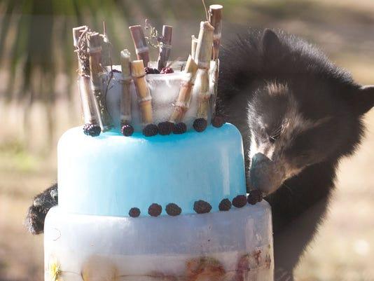 Lucka's First Birthday
