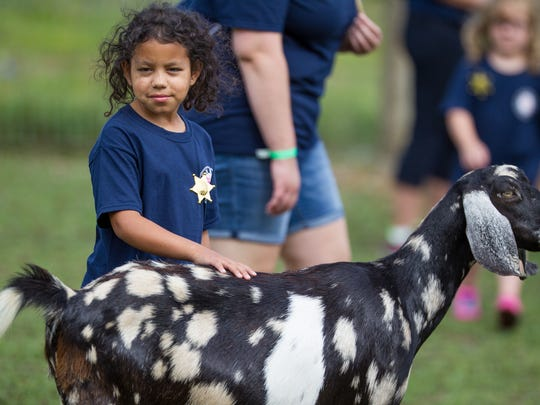 Olivia 8, knows the best place to scratch to make friends with the goats.The weeklong, free camp included a day at the Center for Therapeutic and Educational Riding. The kids had no idea they'd be heading to the C-Line stables in Townsend until that morning.