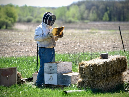 Jonathan Schmitt checks on a beehive on his family's