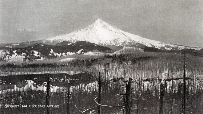 Early postcard of Mt. Hood dated 1904.
