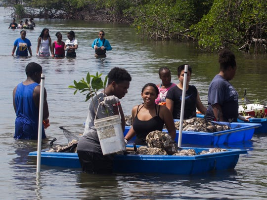A field day event at the Florida Oceanographic Coastal Center in Stuart gives Upward Bound students an opportunity to help with oyster restoration, possibly encouraging them to select a marine career path.
