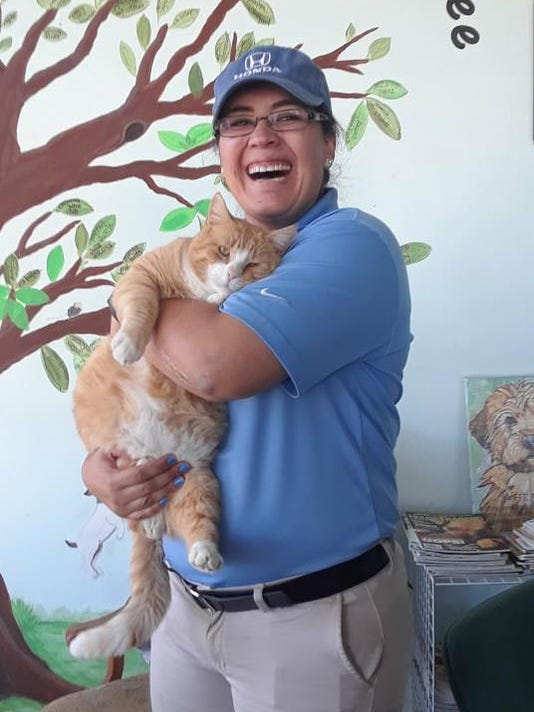 636553871377297020-1.-Morris-the-cat-gets-adopted.jpg