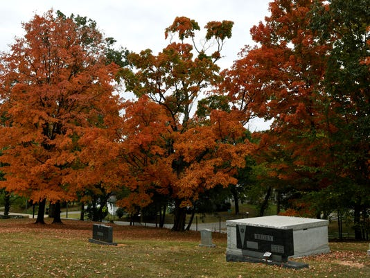 Fall Leaves 02
