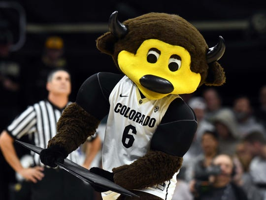 The Colorado Buffaloes mascot Chip celebrates during