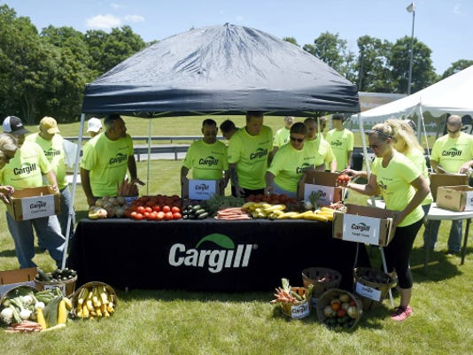 Employees at Cargill pack fresh food into boxes on Wednesday that will be distributed to area shelters and food banks in Lebanon County. Partnering with Gemma's Angels, Cargill has started a fresh food garden that will produce fresh food to be given to those in need.