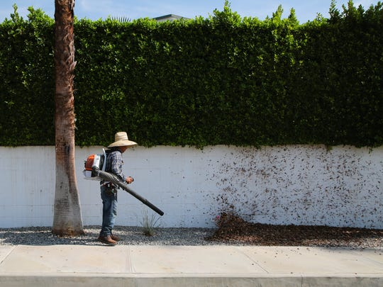 Landscaper Demetrio Vasquez uses a leaf blower to blow leaves that have fallen underneath a hedge in Palm Springs, Calif., July, 18, 2017.