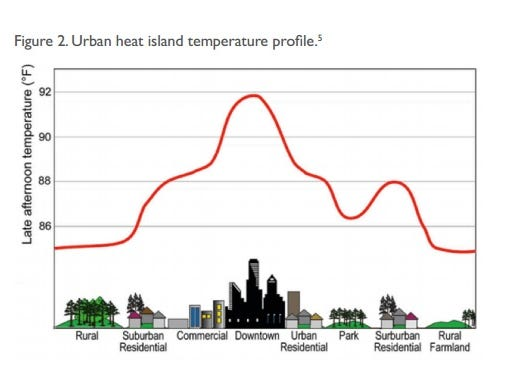 Norfolk Island Average Sea Temperatures