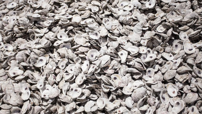Oyster shells are piled in a parking lot in Apalachicola