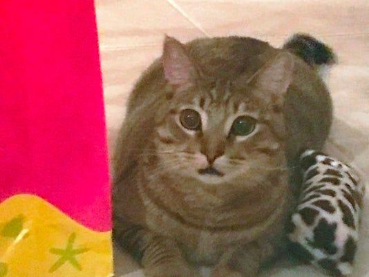 1108-ynmc-catty-duke-1-year.jpg