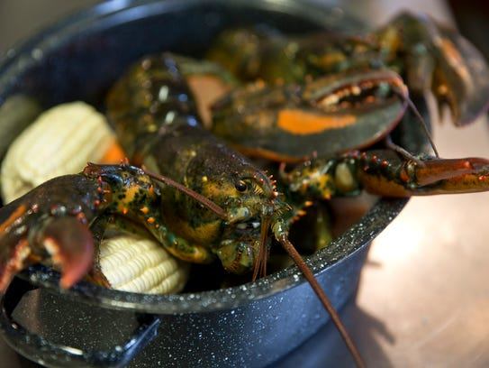 Lobster is served in the steam pots at Terrance Tavern