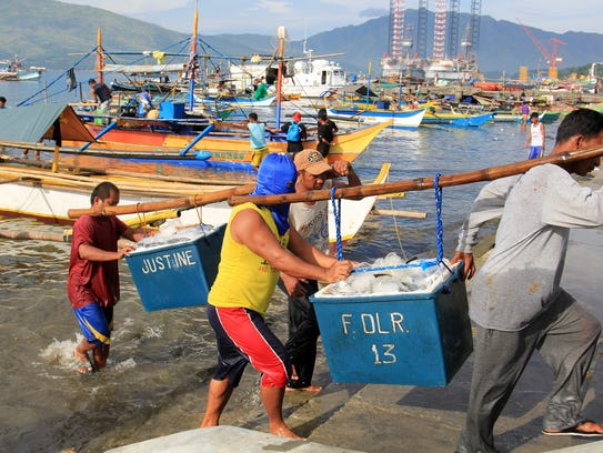 Filipino fishermen unload boxes of fish after coming