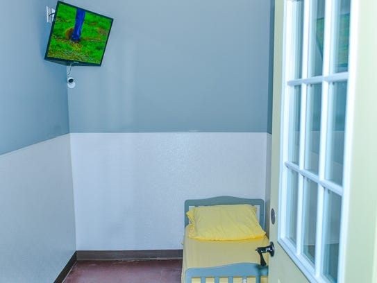 A room at Pooch Palace, dog resort and training center.