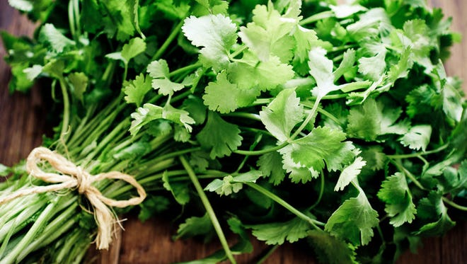 The versatility of coriander will be the featured at the June 19 Flavors of the World demonstration class at the Fond du Lac Public Library's Idea Studio. Registration begins at 9:30 a.m. Tuesday, June 5, at fdlpl.org, click Calendar.