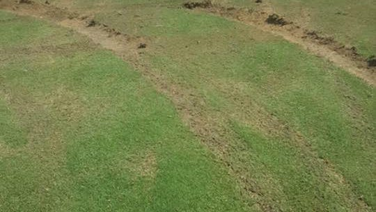 Some of the tire tracks made in the soccer fields in Pearl are shown here in a photo from the Pearl Police Department. Authorities have identified four suspects in the vandalism with hopes to find others soon.