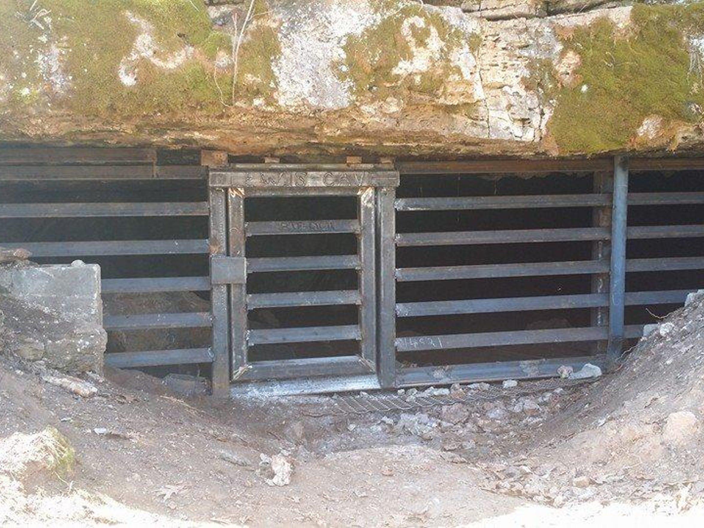 2014_03_23 ZACH WORRELL Lewis Cave Gate Final