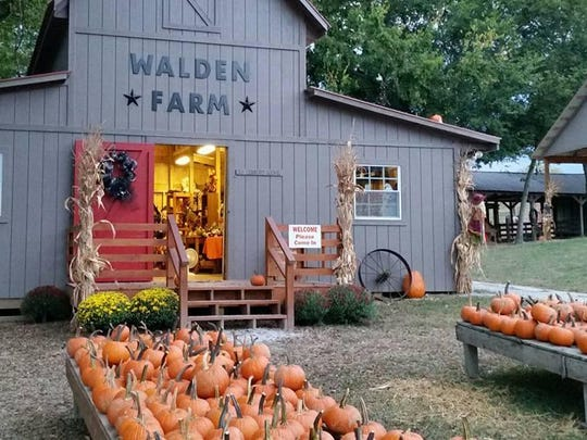 Walden Farm in Smyrna offers fun for all ages.