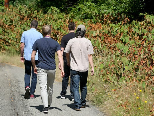 Surrounded by a noxious plant called knotweed, workers at Naval Undersea Warfare Center- Keyport walk along a road on base. The Navy and Kitsap County are teaming up to get rid of knotweed and other noxious plants on Keyport and other bases.