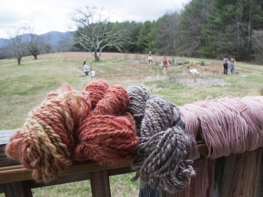 Yarn dyed from plants grown in Warren Wilson College's dye garden, in background.