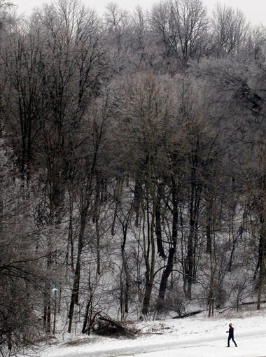 A lone man walks in Cherokee Park among ice coated trees after freezing rain coated them with more than a half inch of ice over nigh in Louisville, Kentucky.       February 5 , 2014
