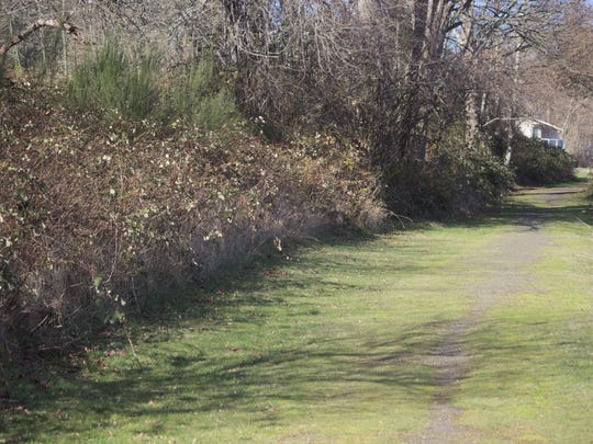 The proposed site for a new waterfront park in West Poulsbo sits along a short trail stub the city already manages.