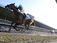 The Triple Crown winner American Pharoah will attend Downs After Dark at Churchill Downs Saturday