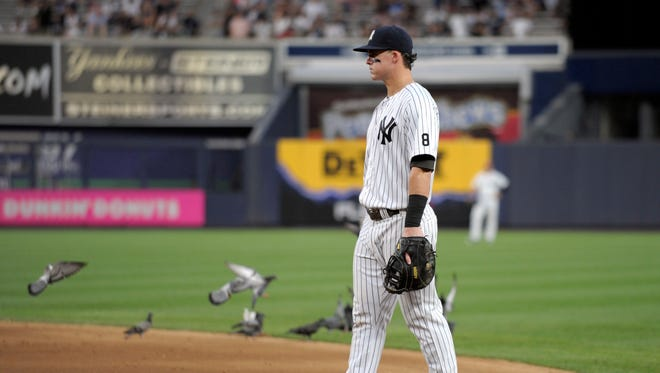 In this Saturday, Sept. 10, 2016 photo, New York Yankees first baseman Tyler Austin looks on as he is joined by pigeons during the eighth inning of a baseball game against the Tampa Bay Rays at Yankee Stadium in New York.