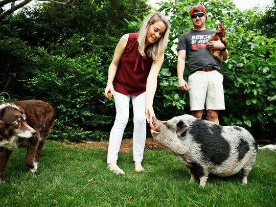 Hamilton the pig lives in Raleigh, N.C., with Kyle Eckenrode, right, and fiancee Karoline Briggs, as well as Australian shepherd Ze and eight chickens.