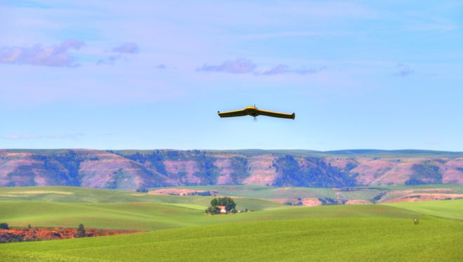 Equipped with cameras and senors that can take measurements beyond visible light, unmanned aerial vehicles, or drones, offer farmers the opportunity to collect detailed information on the presence of weeds, plant densities and crop health. Here, a Sensefly eBee Ag drone comes in for a landing at Robert Blair's farm in central Idaho.