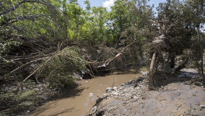 Fallen trees are shown July 20, 2017, after a flood at Stagecoach Mobile Village in Mayer, Arizona.