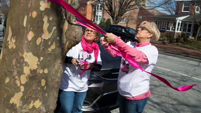 Amy Milligan, left, and her sister Laura Milligan tie pink and gold ribbons on the trees around Padua Academy in preparation of welcoming back Cindy Mann as head of school Sunday.