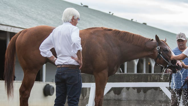 Trainer Bob Baffert takes a look at his Triple Crown contender Justify as the horse is bathed following a workout at Churchill Downs. May 29, 2018