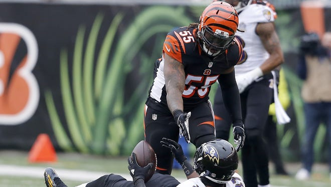 Vontaze Burfict led the Bengals in tackles on Sunday against Baltimore and seems primed for the playoffs.