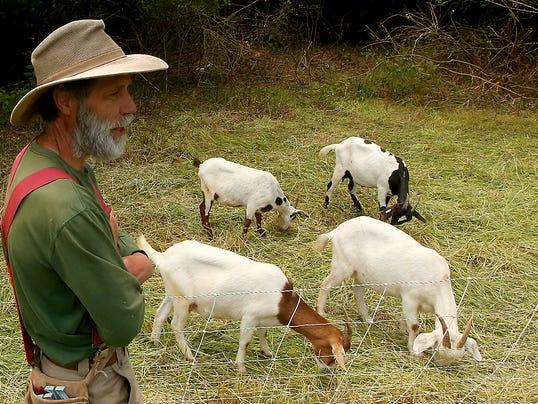 BI-Park-Goats-01.JPG