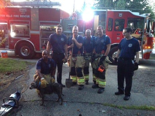 The Rescue Team.jpg