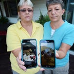 Joni and Shawn Coyte show photos of Yodi, a dog the couple cared for recently, on their cell phones. Yodi died about six weeks after the Coytes were granted ownership of the dog, after she was brought into Joni's pet grooming facility in poor health.
