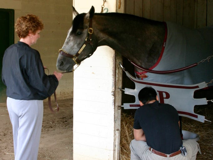 Springfieldian Tim Straus attended the 2006 Derby and had access to the barn areas. Here are his photos of Steppenwolfer and from that day.