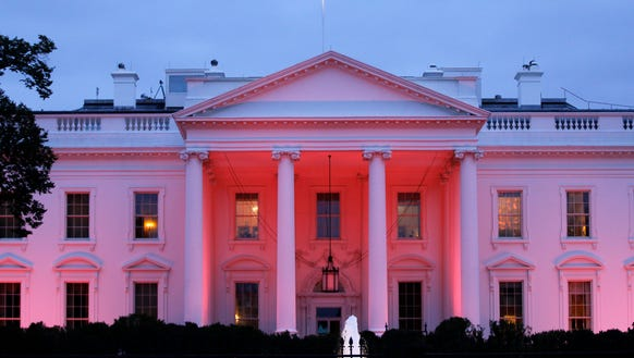 PINK WHITE HOUSE_001