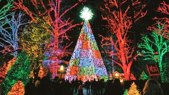 You have until noon on Dec. 15 to vote for your favorite public holiday lights display.