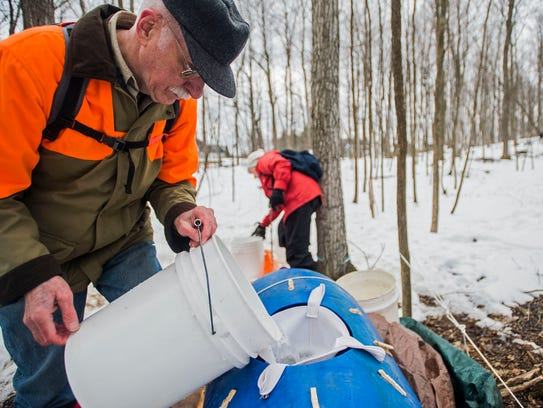 Residents dump collected sap in to a transfer tank
