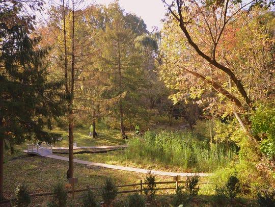 Crystal Spring in Laurel Springs near Laurel Lake inspired