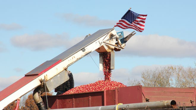 The WI cranberry industry exports as much as 40 percent of its products.