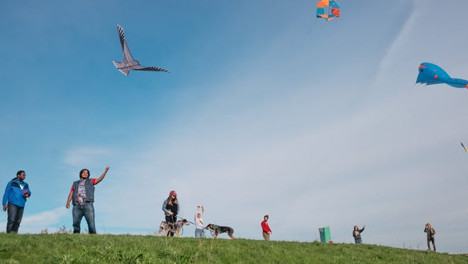 The Detroit Kite Festival will be at Belle Isle July 16, 2017.