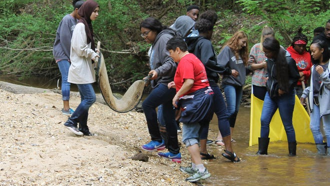Students found several different species of damselfly larvae, giant water scorpions, tadpoles, as well as several other aquatic biodiversity found in freshwater ponds, creeks and streams.