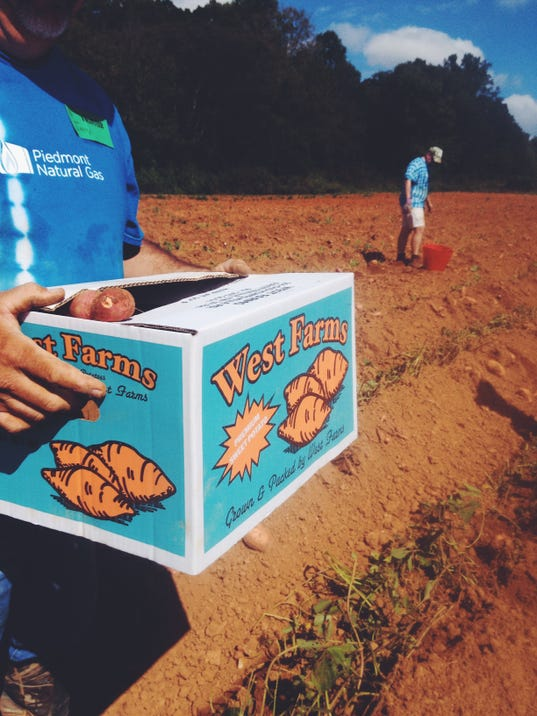 Sweet idea feeds hungry tennesseans for Americas second harvest