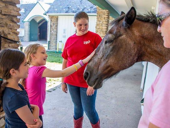 Visitors can pet the horses at Greenacres Farm.