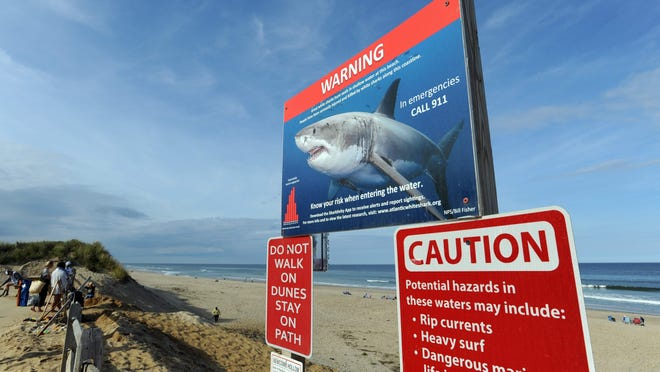 New warning signs were posted last summer at Newcomb Hollow Beach in Wellfleet and other area beaches to warn beachgoers of the threat of great white sharks. Newcomb Hollow is where Arthur Medici was attacked and killed by a great white in September 2018.