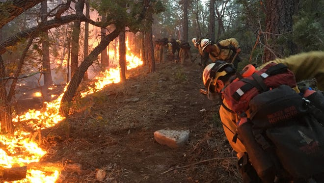 Forest Service Hotshots work a wildfire within national forest lands.